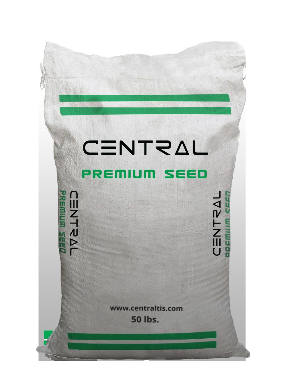 CTIS_Seed Bag_Single.png