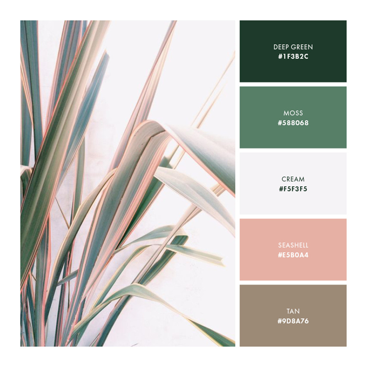 Palette 2 // Soft and Natural