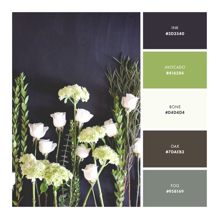 Palette 5  //  Strong and Uncompromising