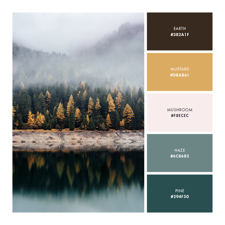 Palette 4  //  Approachable and Earthy