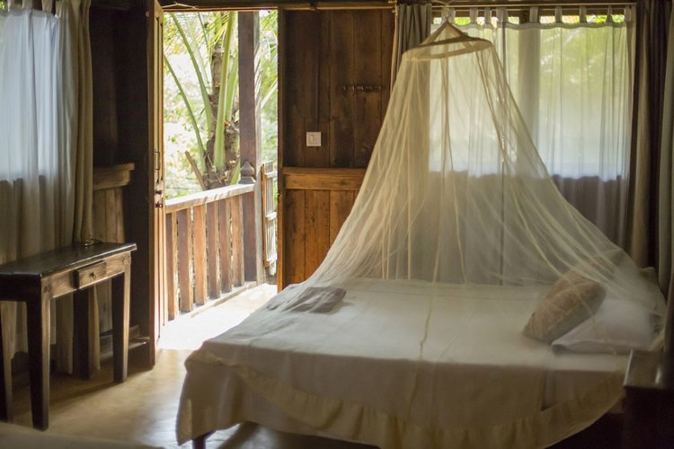 The Eco Lodges are close to the reception area and the wooden yoga shala. They are 2 story buildings split into two separate, self-contained rooms, each with en-suite bathrooms, on each floor.  Each room has its own spacious balcony with daybed and magnificent views of the palm grove at the front. The lodges have a distinctly 'Indonesian' feel, with beautiful silk drapes.