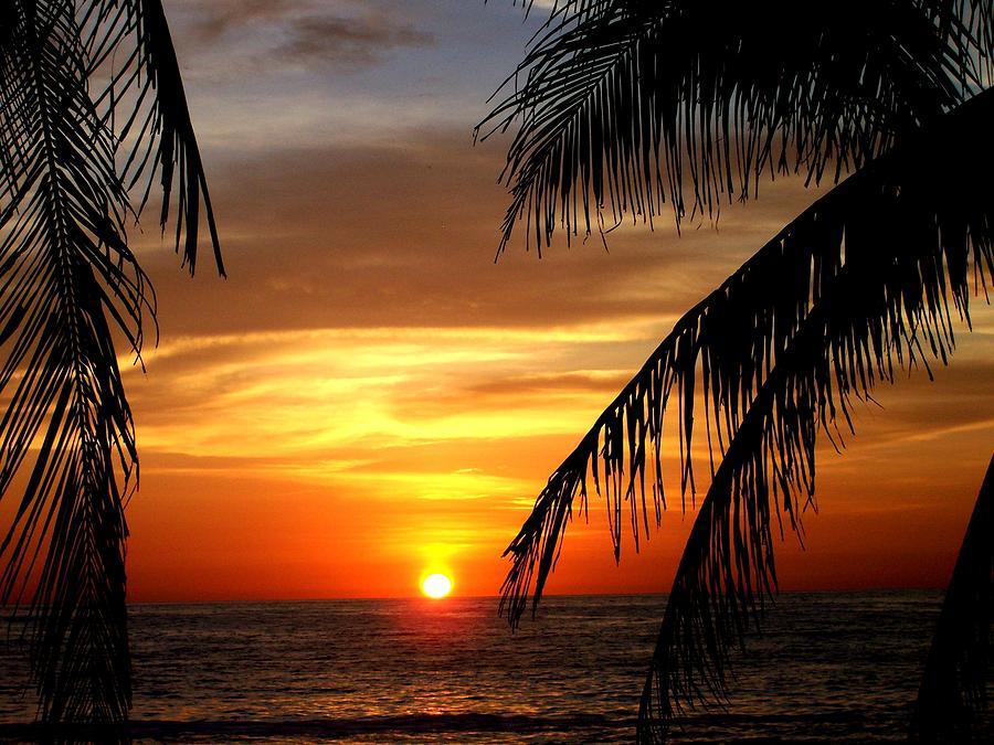 sayulita-sunset.jpg