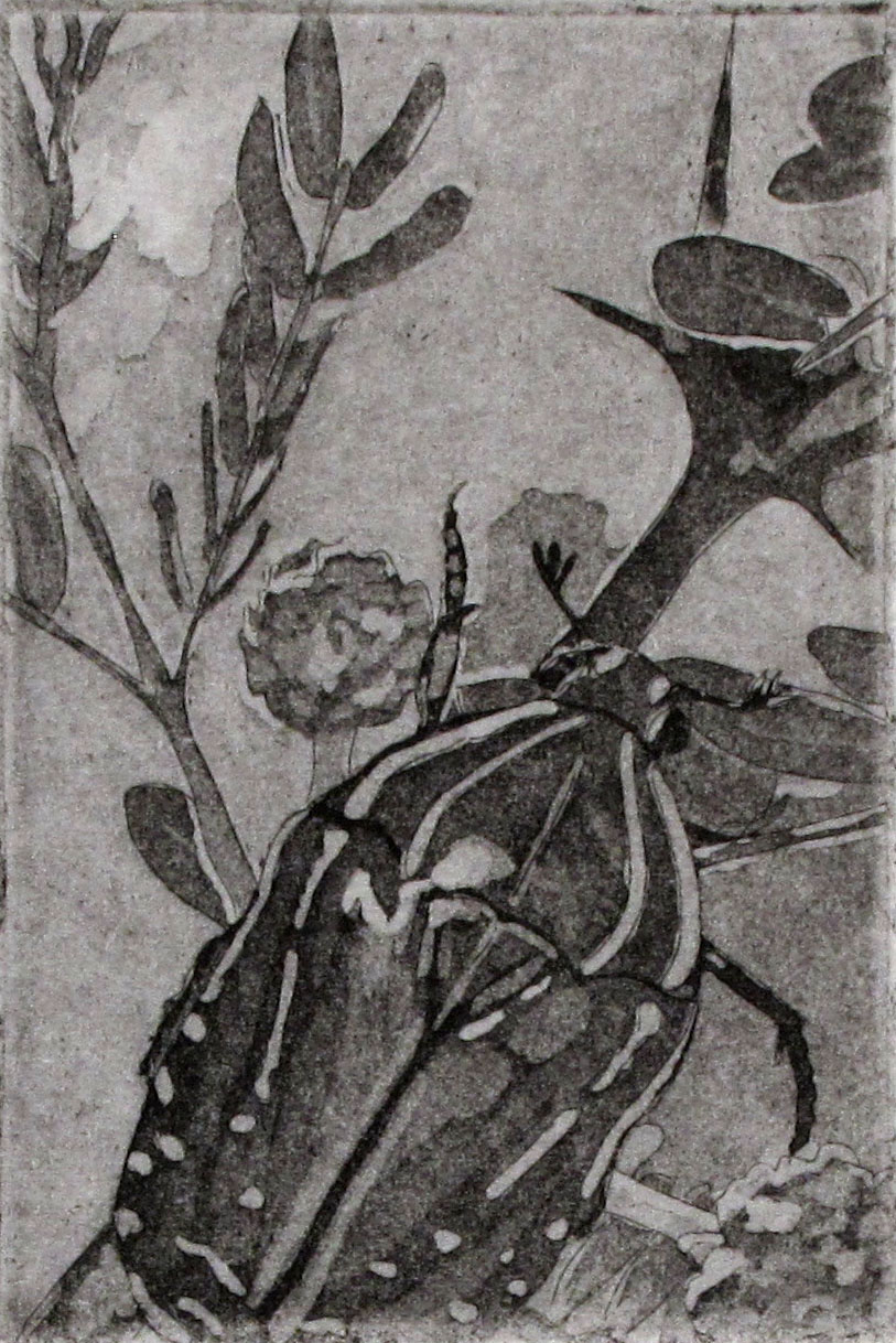 "Small World    - 2011, ink on paper, 2x3"" image, etching and aquatint"