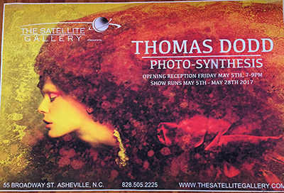 Photosynthesis.jpg