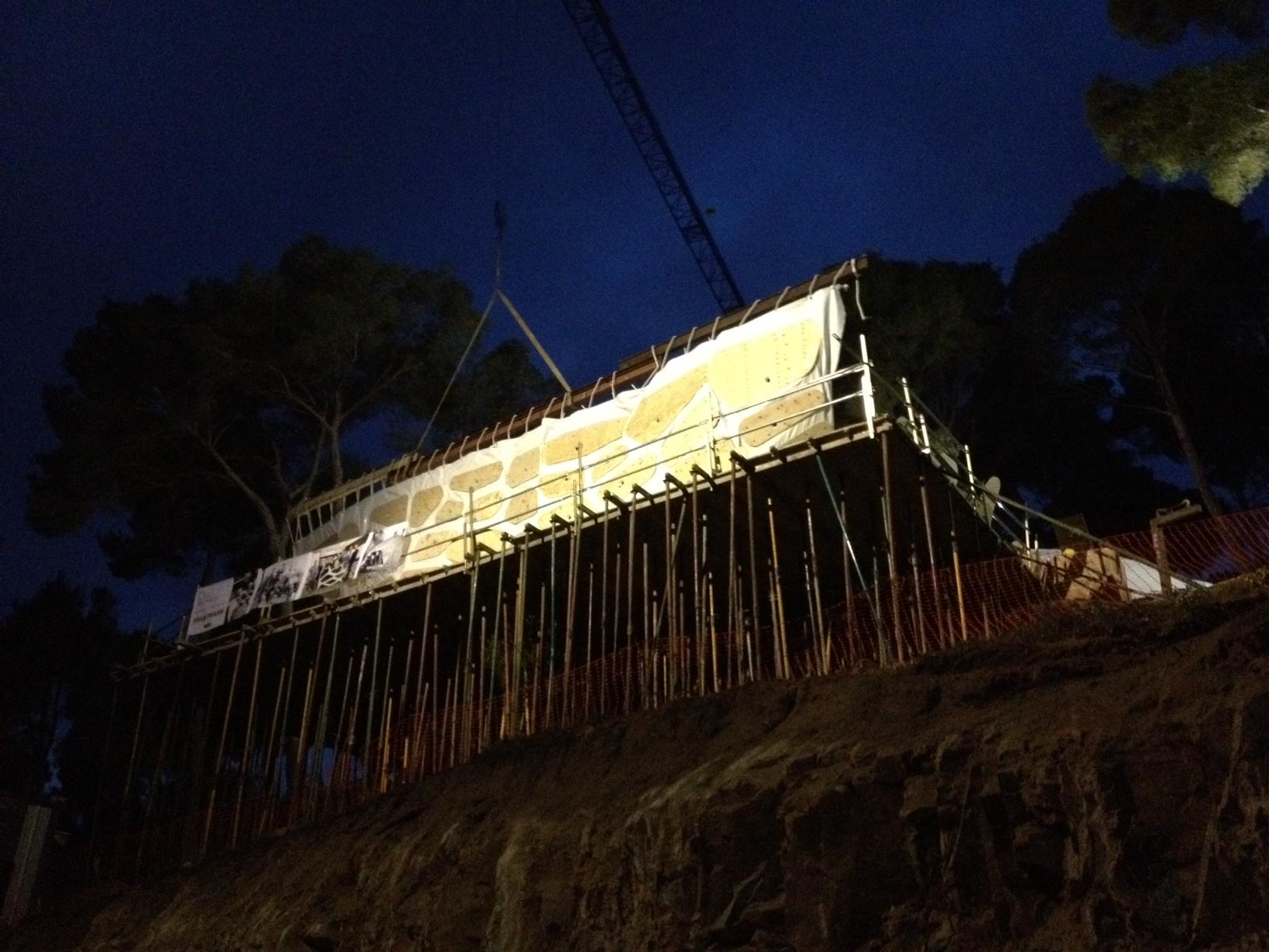 c9_scaffold
