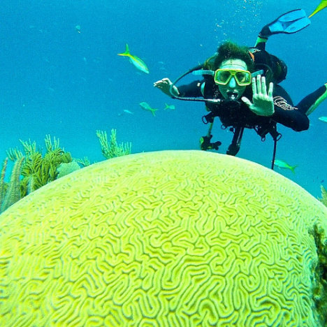 Me, diving in Cayo Levisa, checking out this incredible Brain Coral