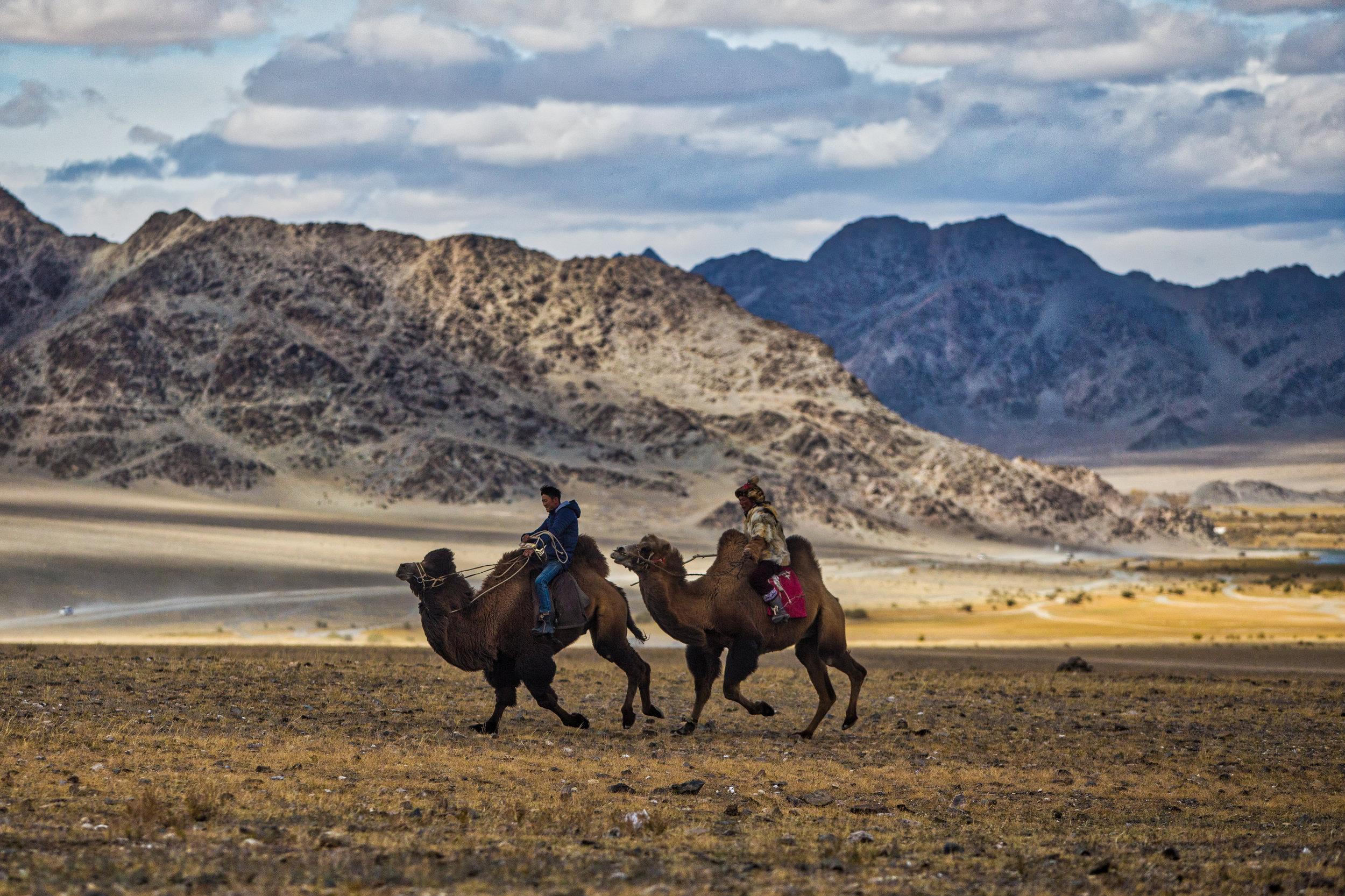guide-to-mongolia-6
