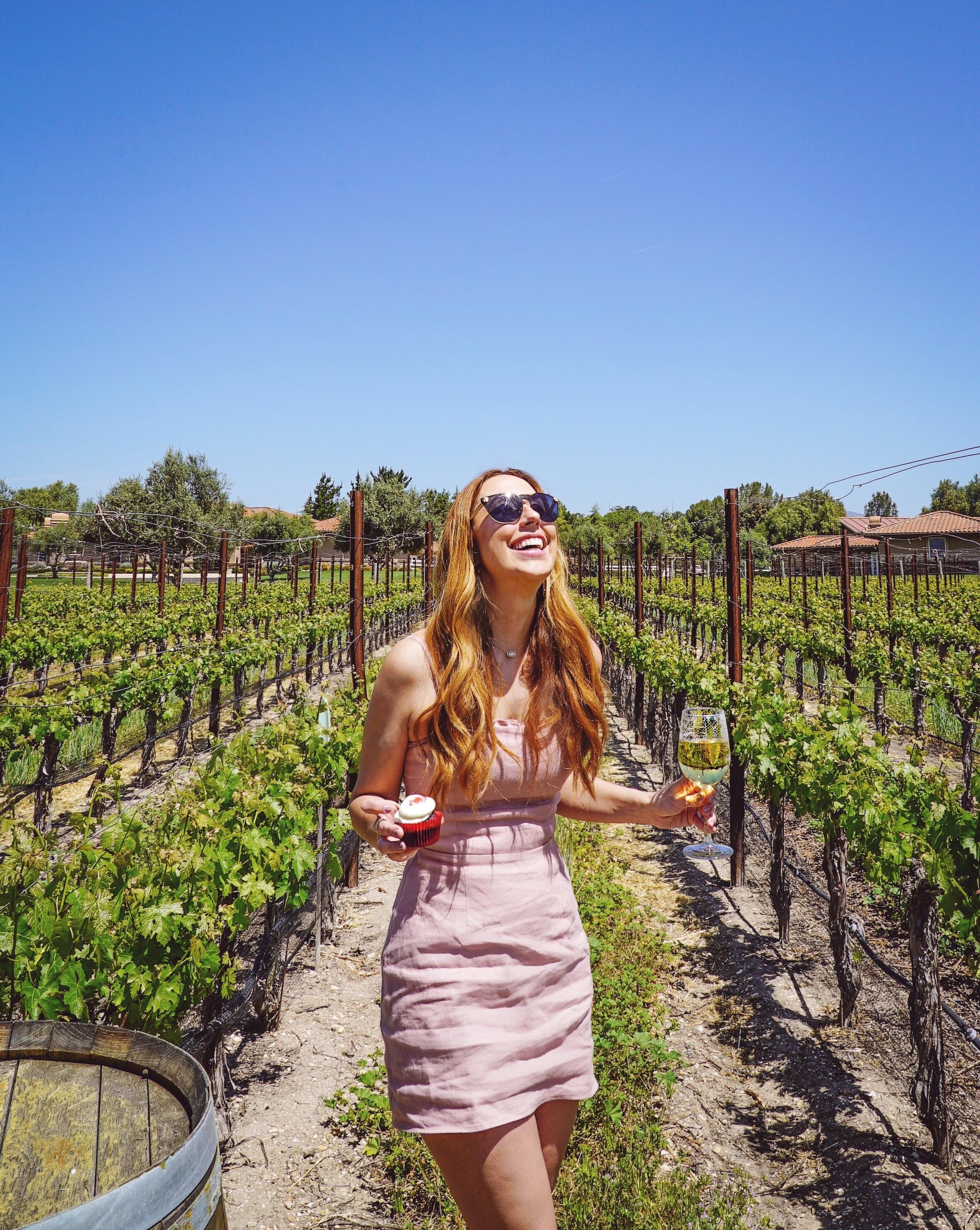 wine and cupcake tour vincent vineyards santa barbara