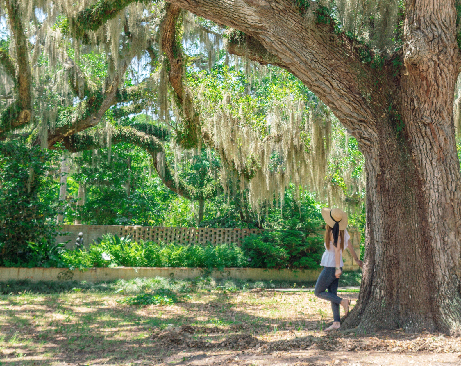 Brookgreen Gardens is a fun thing to do in myrtle beach