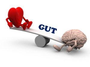 head heart gut.jpg