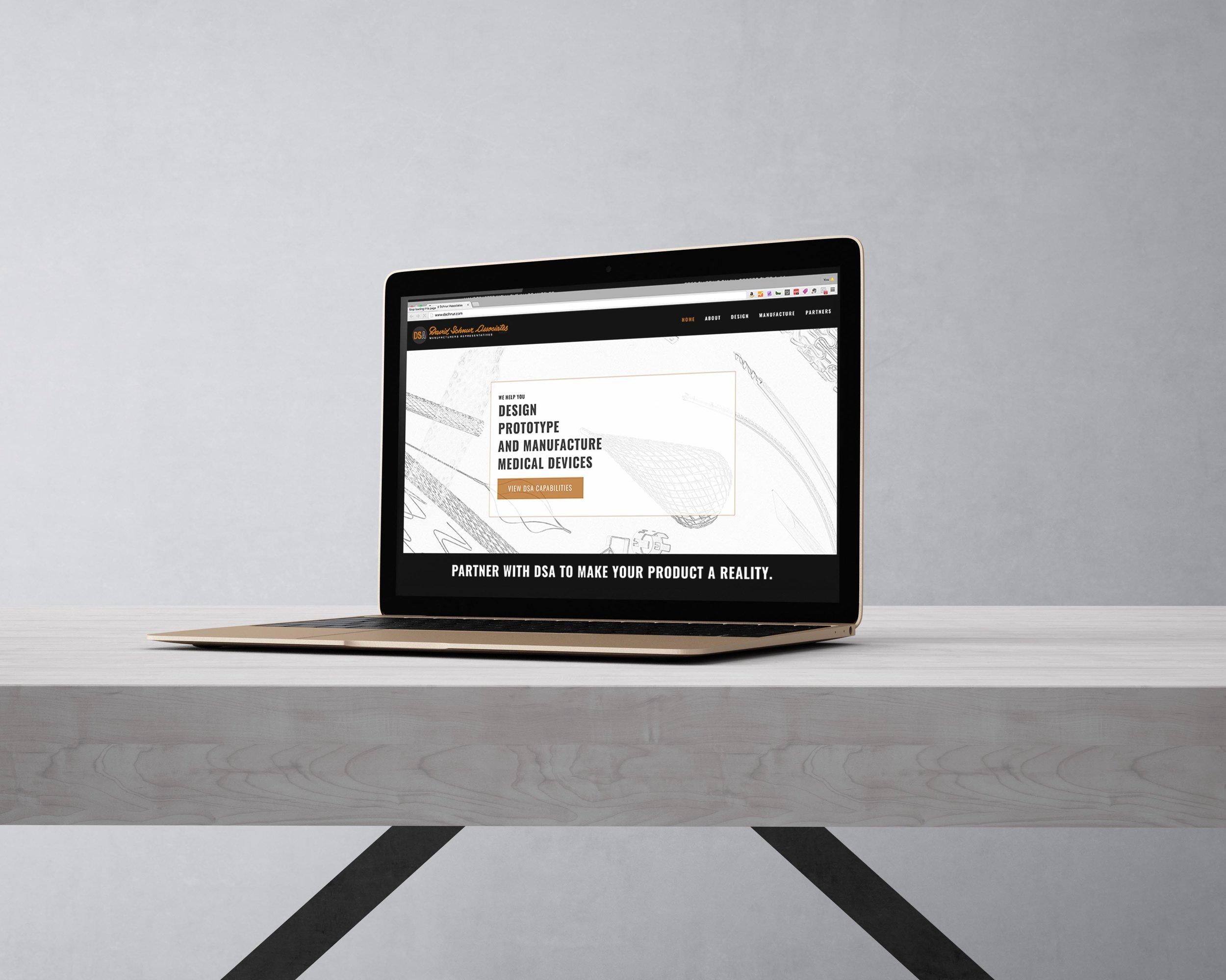 David Schnur Associates Content Page