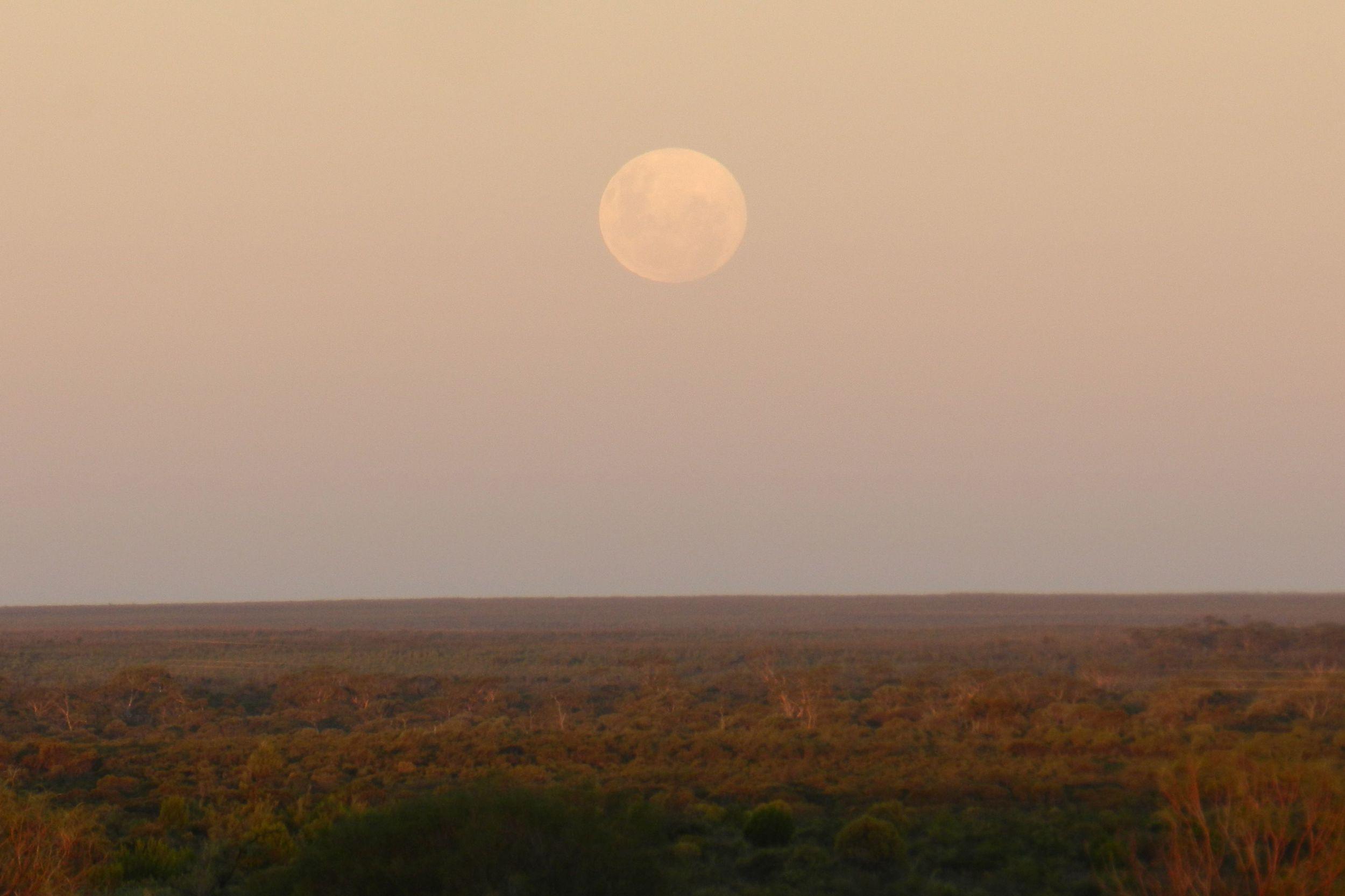 moonrise over Koora1.jpg