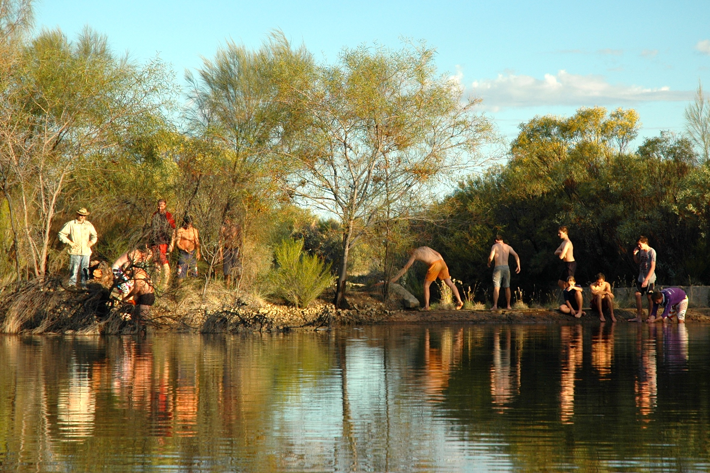 tree clearing in Boorabbin reservoir