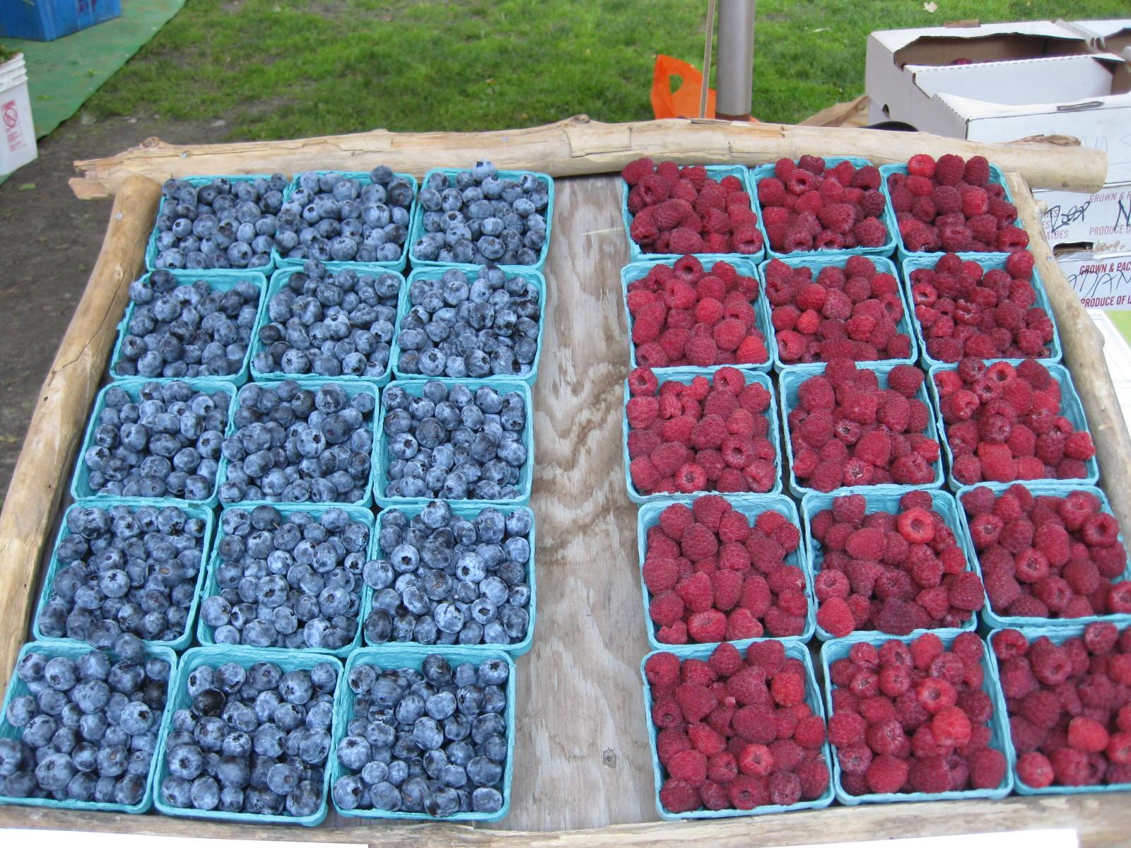 blueberries and raspberries.jpg