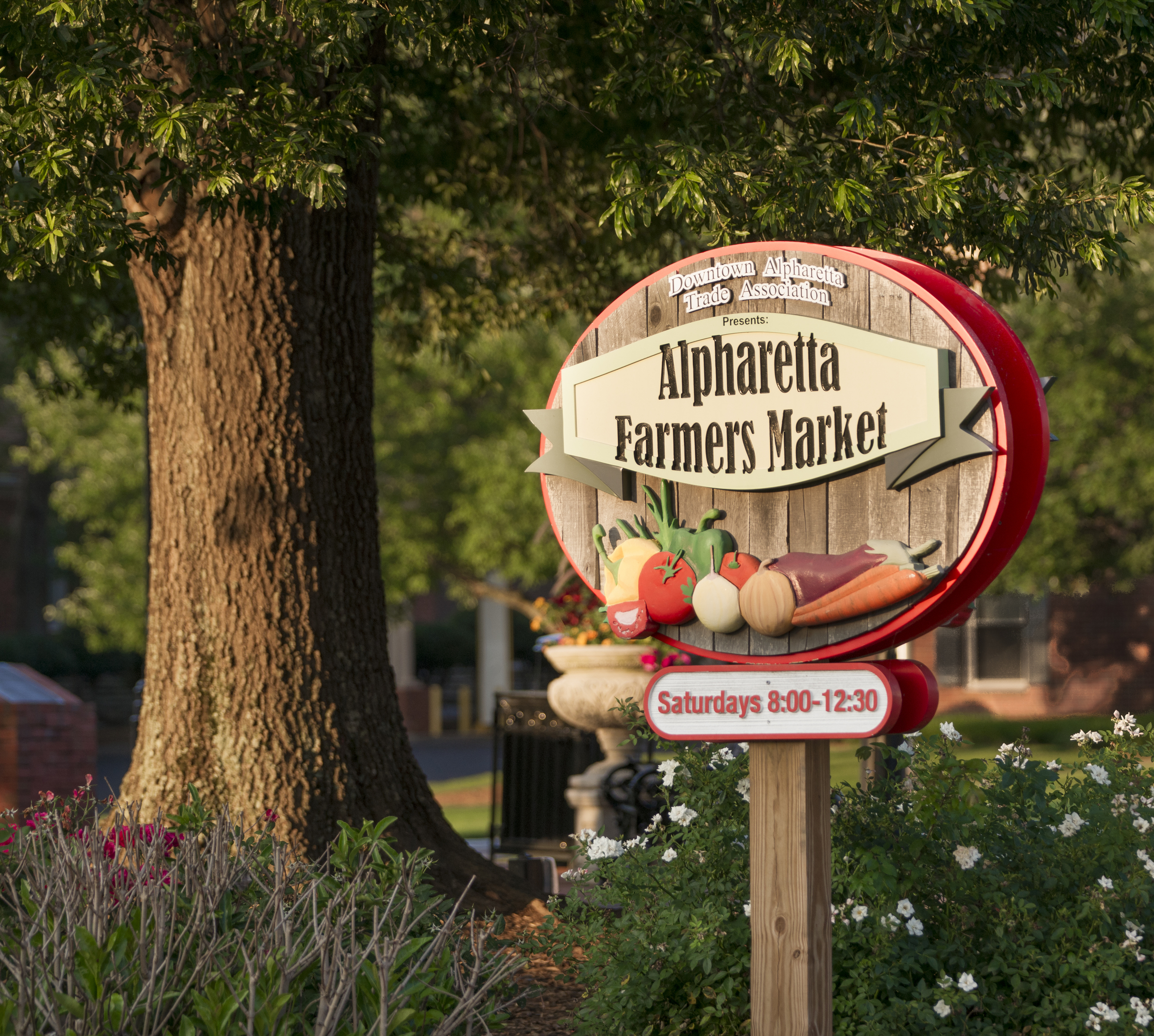 Alpharetta is a lively town to be a part of and it provides many engaging events.