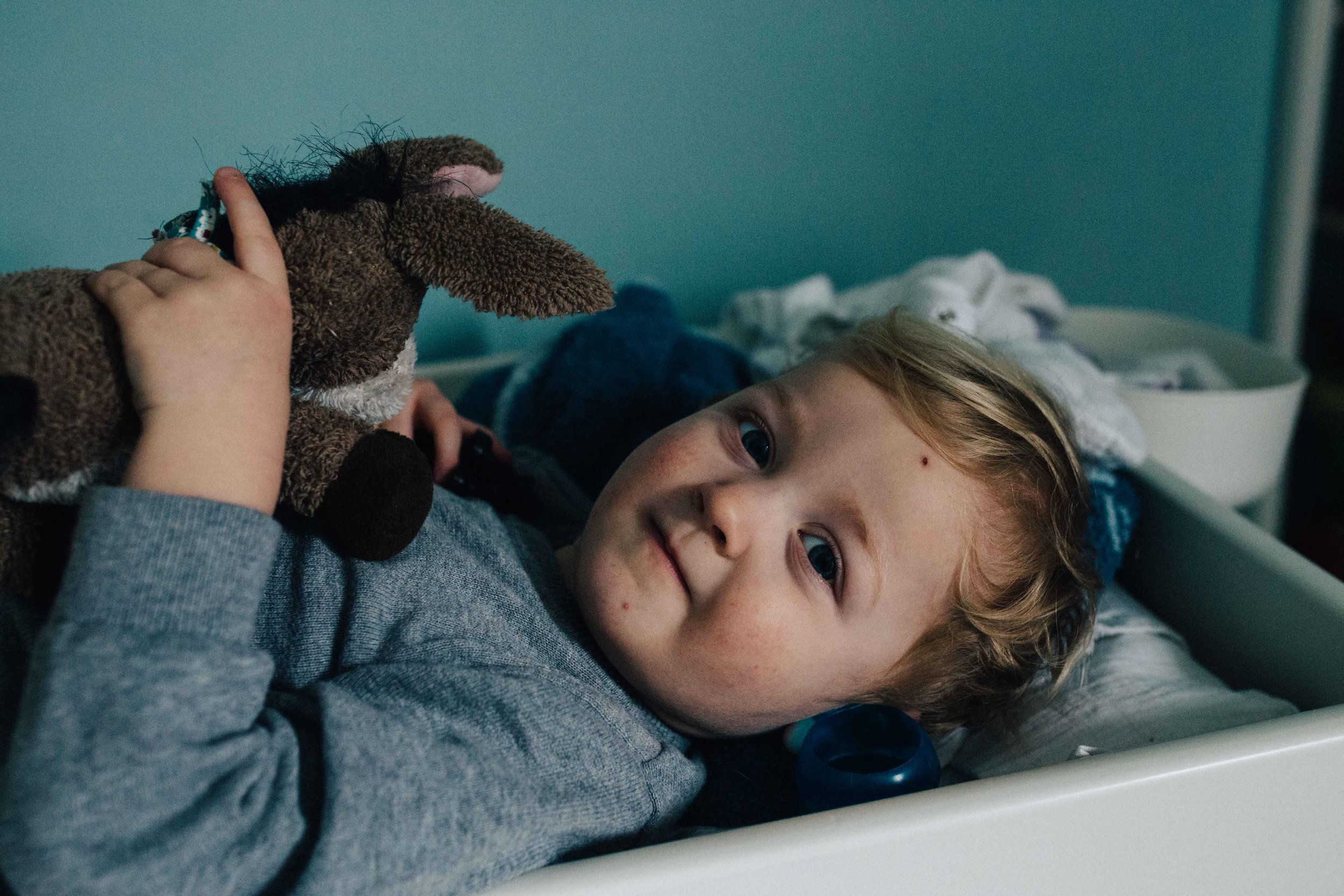 Little boy looking at camera and holding soft toy
