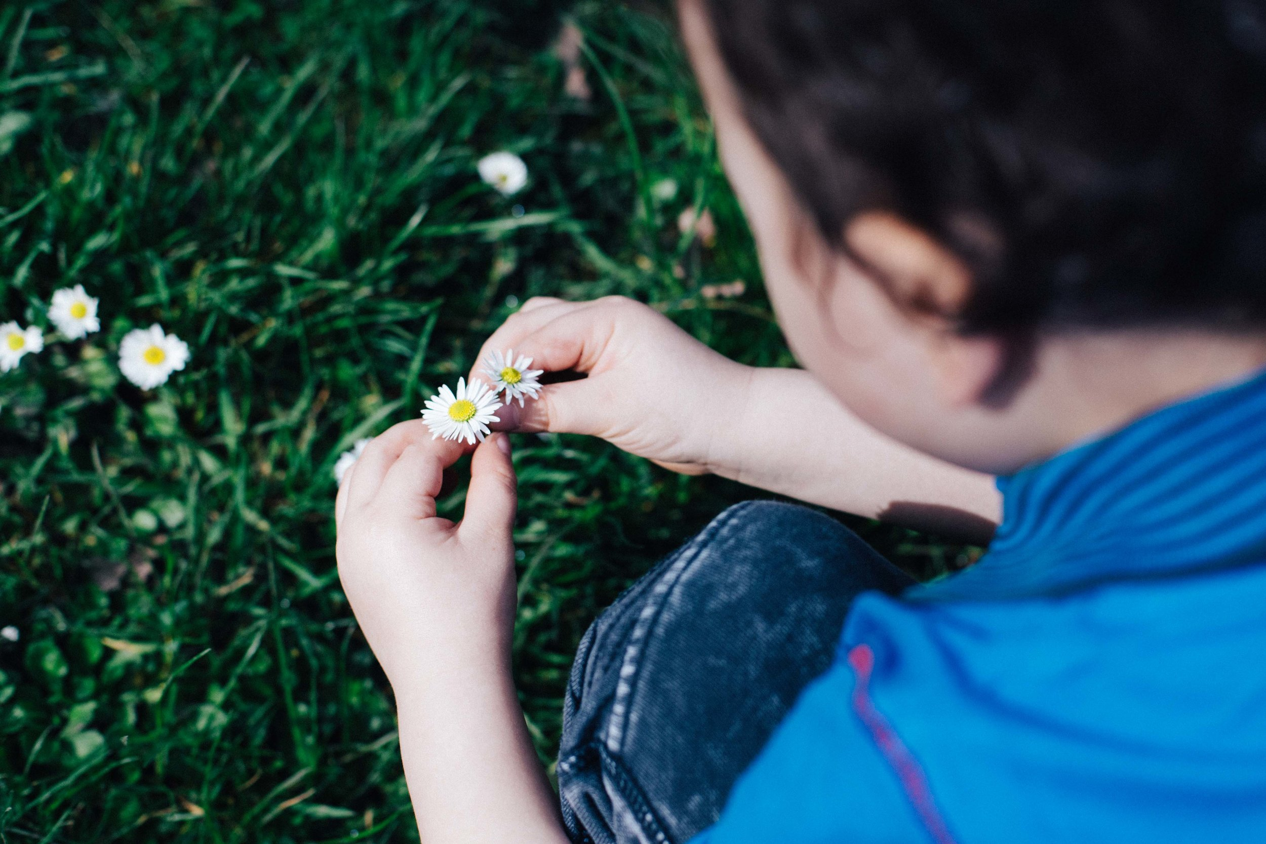 Boy playing with flowers at the Horseman Museum, Forrest Hill during children photography photo session in London
