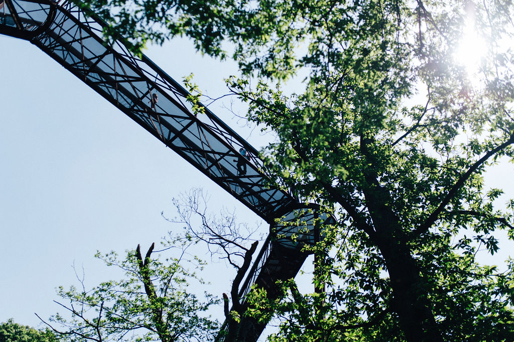 Bridge at Kew Gardens, London, view from below