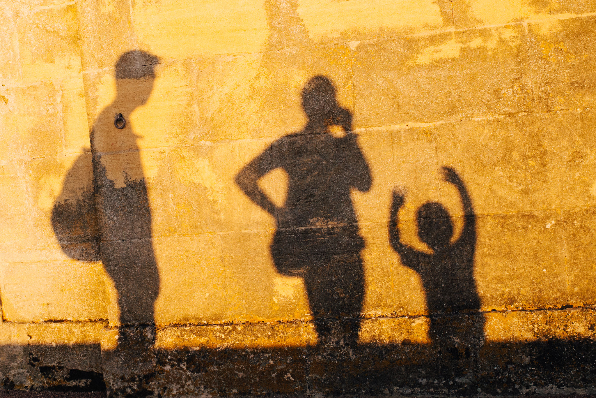 Shadows of a family