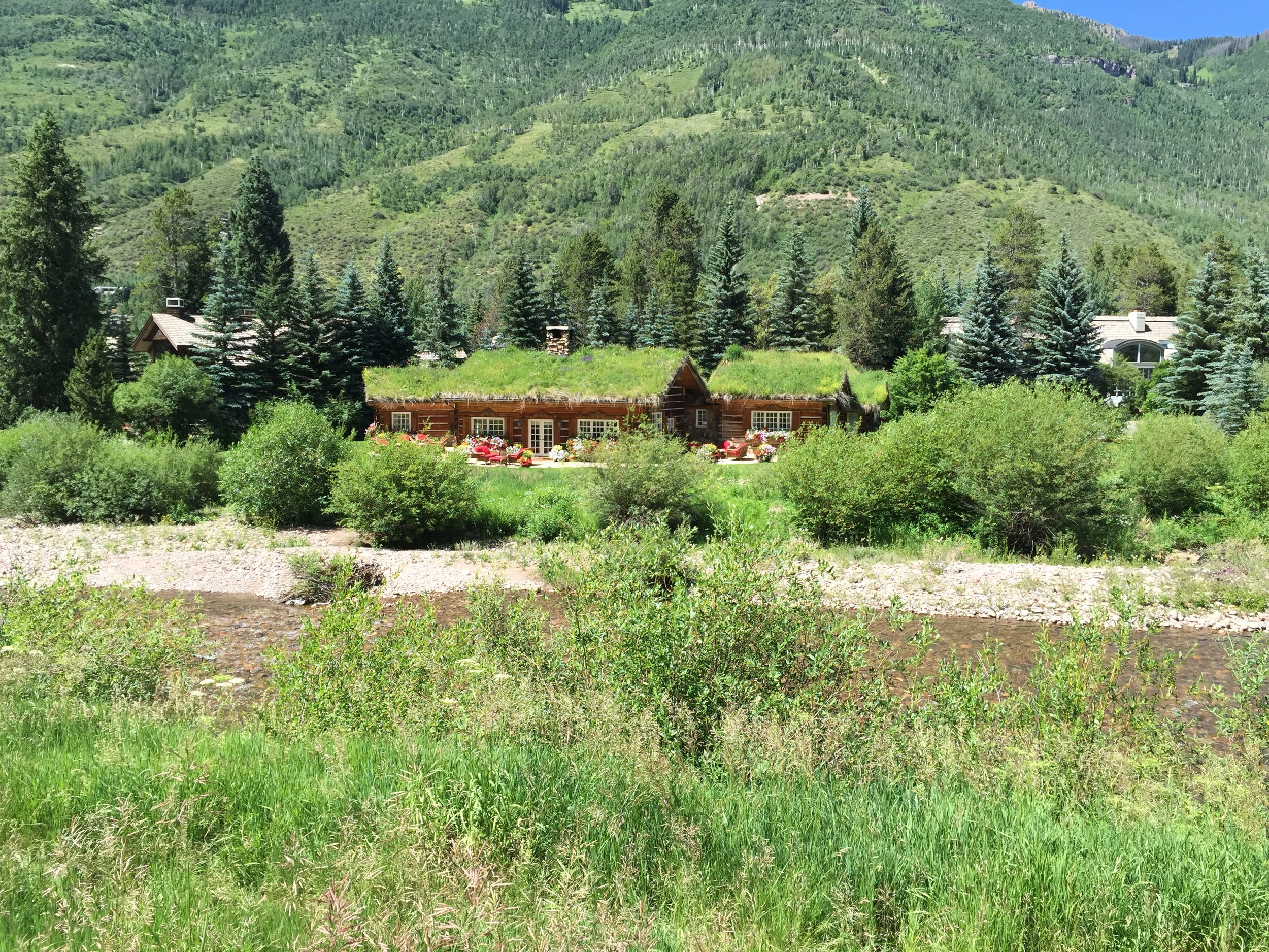 Vail-Colorado-Green-Roof-3.JPG