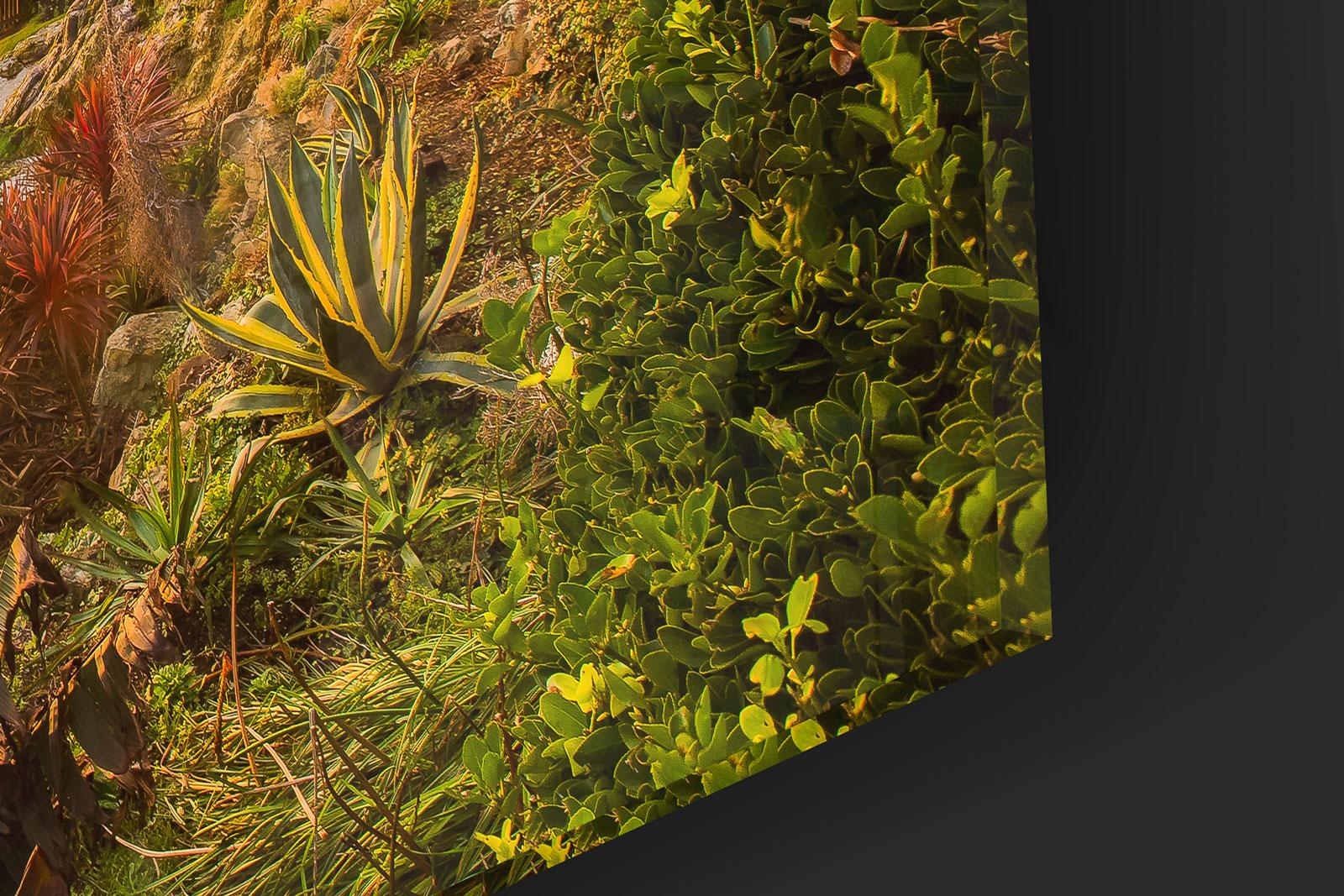 Ventnor-Cascade-Close-Up.jpg