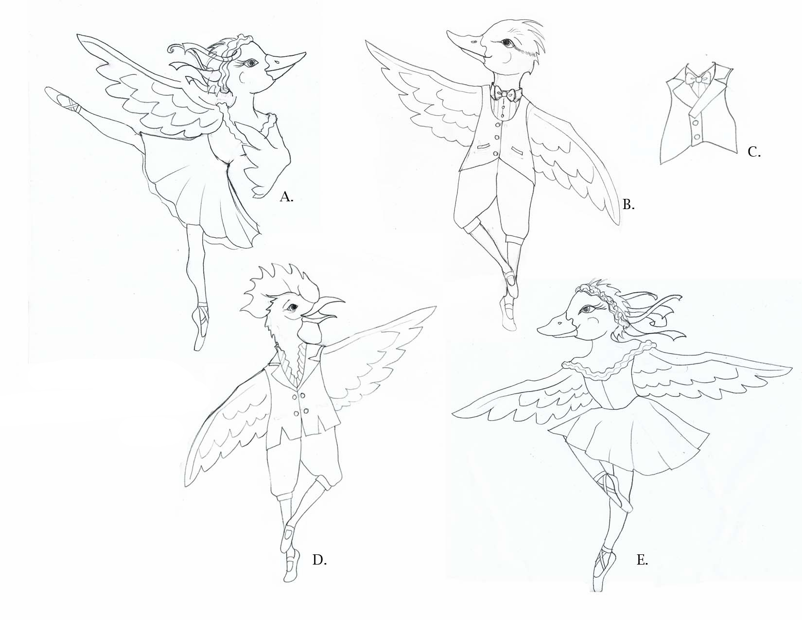Bird Ballet Sketches