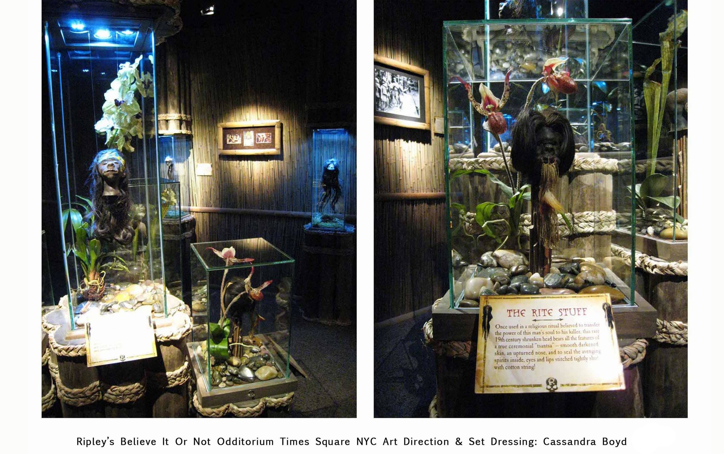 Ripley's Believe It Or Not Times Square Museum
