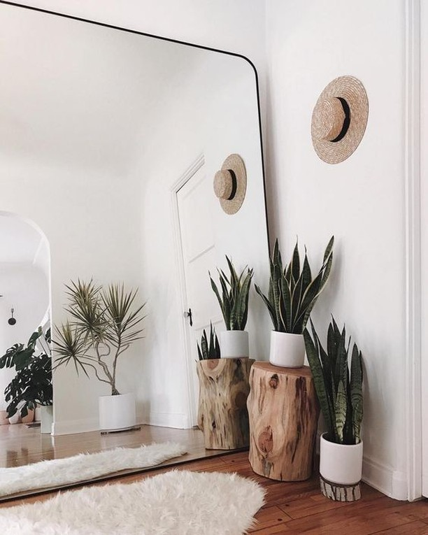 Not enough space for more plants? Mirrors give the illusion of a larger space, with the added benefit of making it look like you have 2x the plants without the work.  #plantmom #inspo #interiordesign #ideas