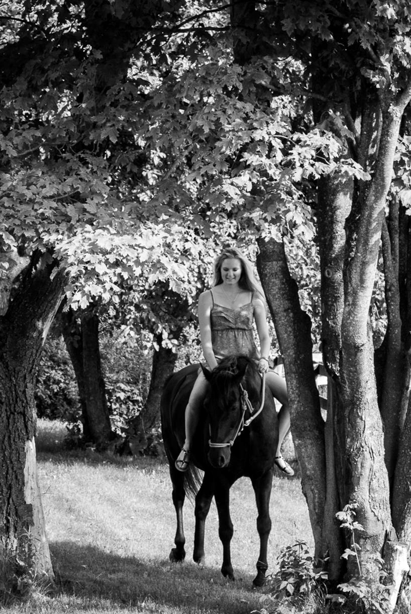 horsesite-2.jpg