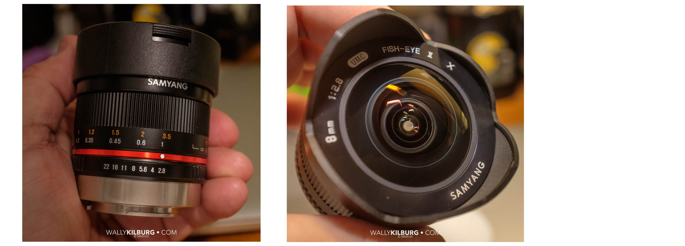 Samyang 8mm.jpg
