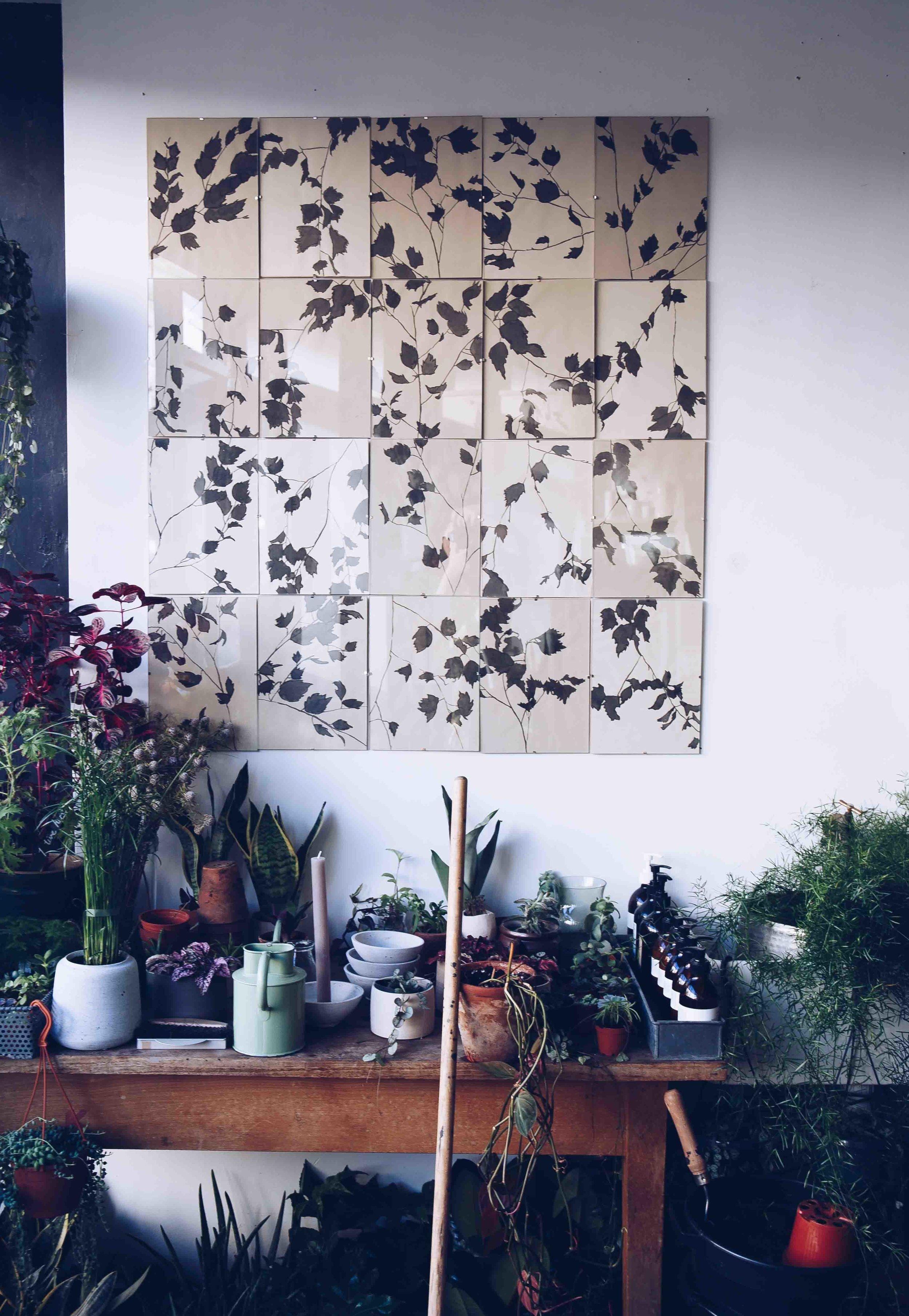 Botany_LA_Event04.jpg