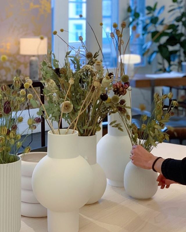 Super chuffed to have our stems gracing the beautiful showroom at SCP. A selection of our dried flowers are available to purchase online via the link in our profile and you can also email the shop for limited stems that aren't online. We're online and mail order only. Image @scp_contracts.