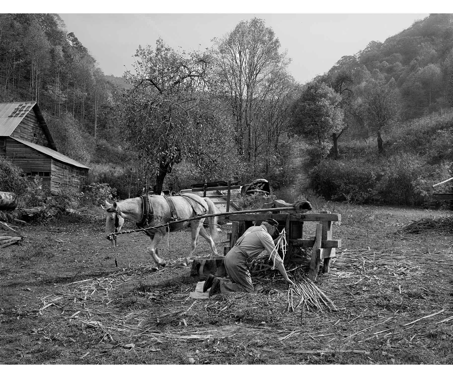 Appalachia Appalachian molasses making horse powered mill Tim Barnwell photographer