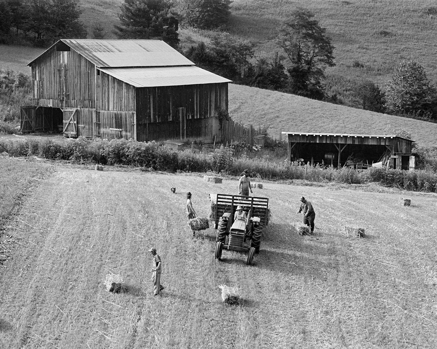 Family putting up hay, 1986 (book cover image)