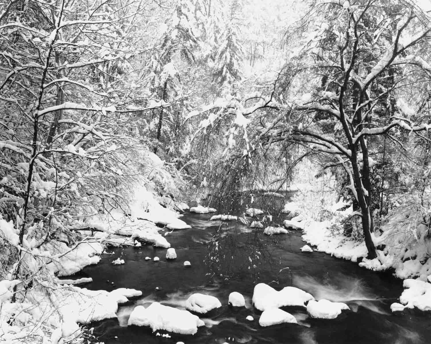 Spring Creek in heavy snow, 1987 (page 15 in book)