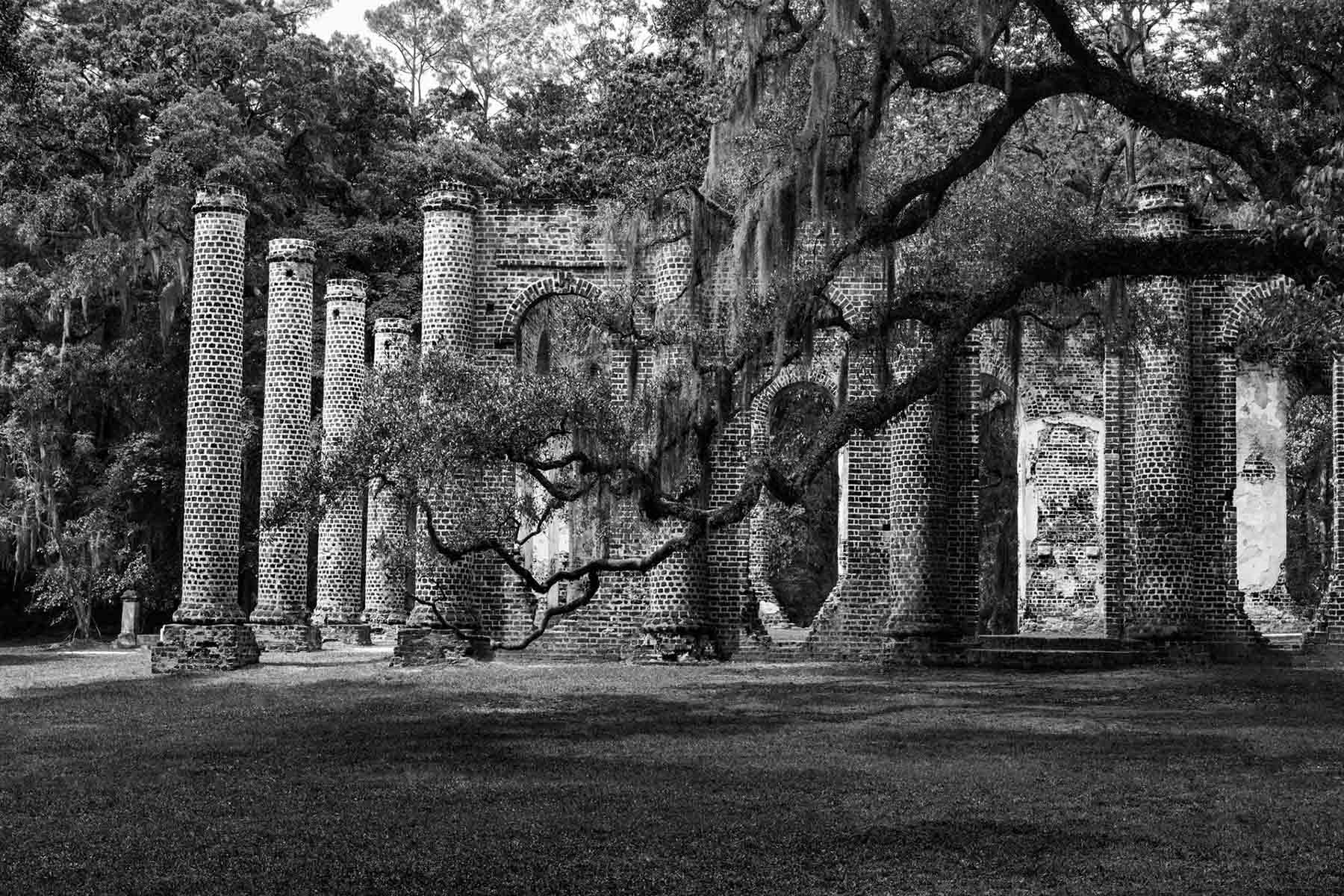 Old Sheldon Church, Beaufort SC Tim Barnwell photographer
