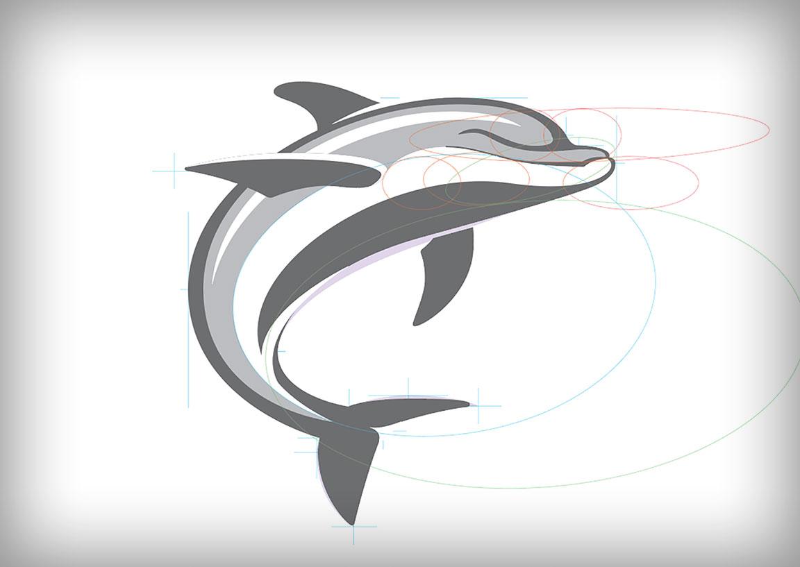 dolphin-build-7.jpg
