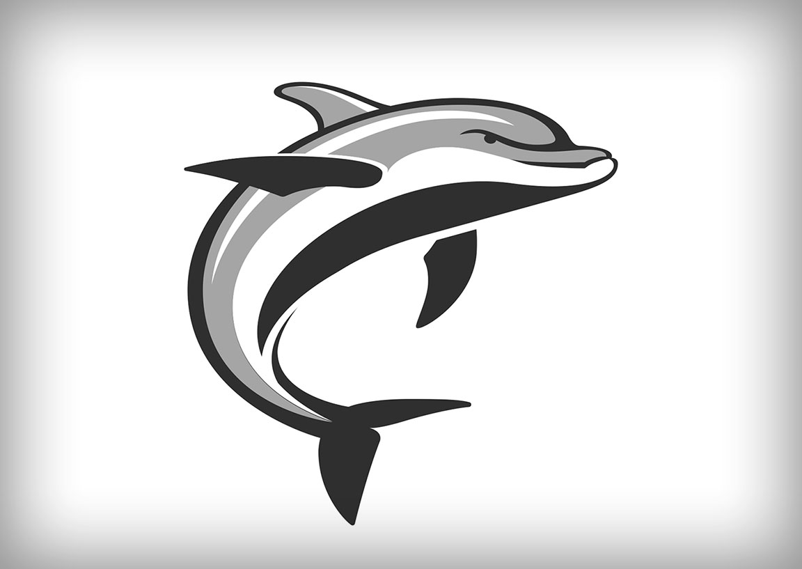dolphin-build-8.jpg