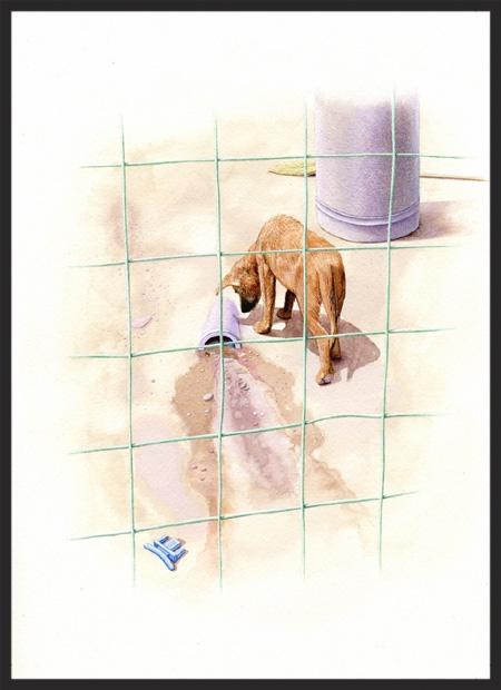 La Morita Watershed with dog