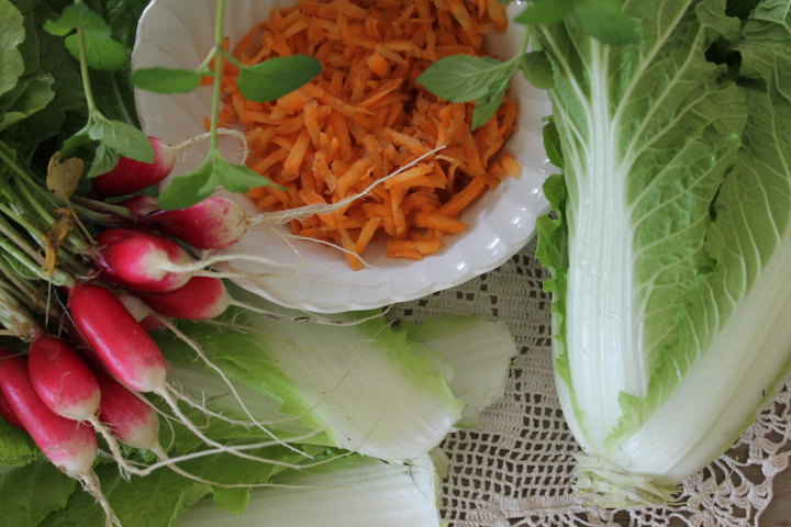 Array of vegetables for salad.