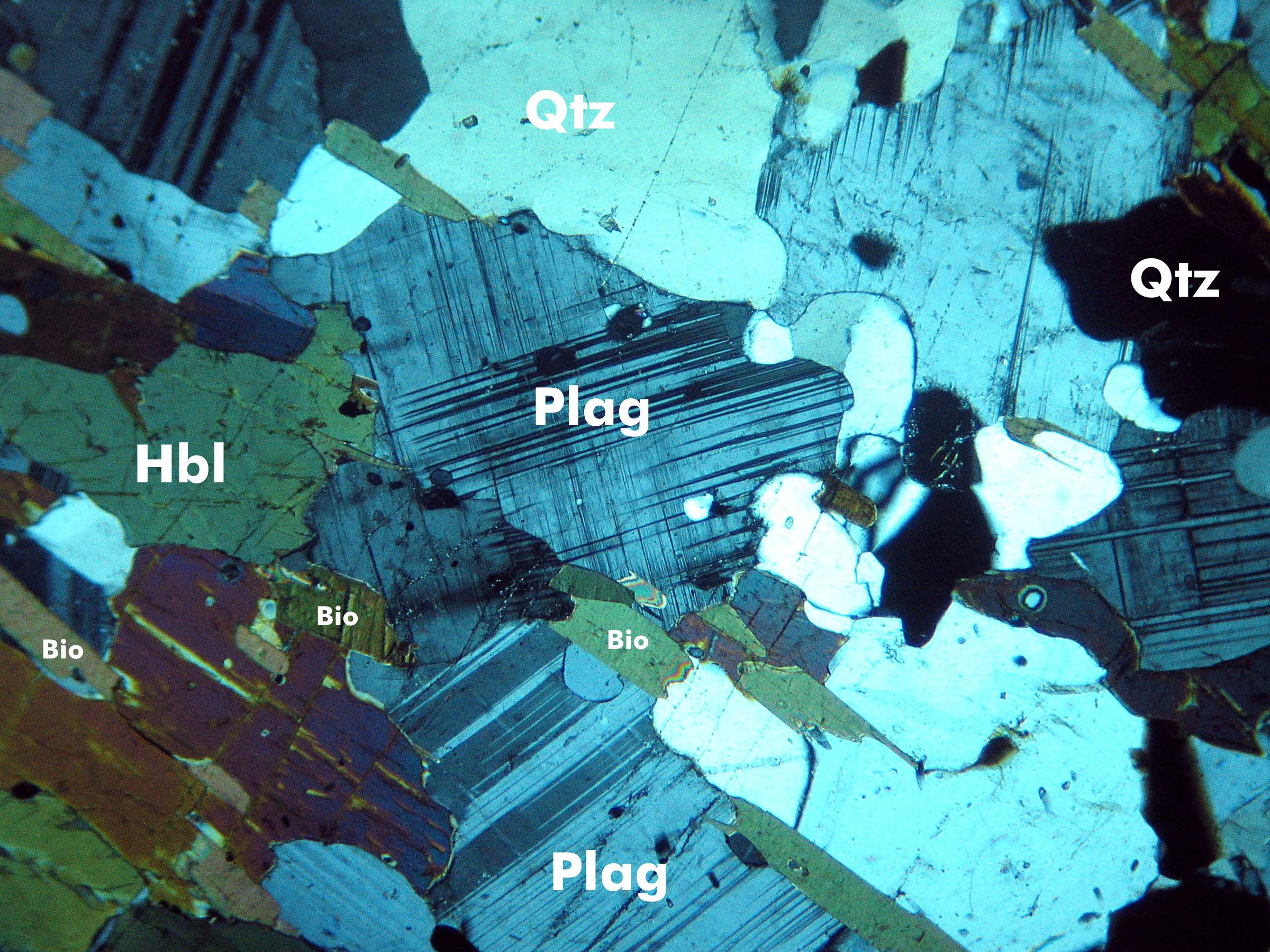 PlagG3XP.jpg