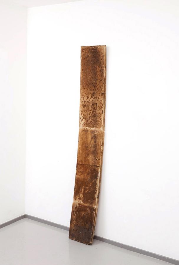 Untitled  2012 Polystyrene foam 230 x 31 x 6cm