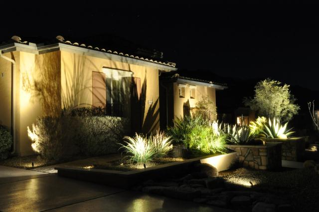 Agave Shadow Imprint on House
