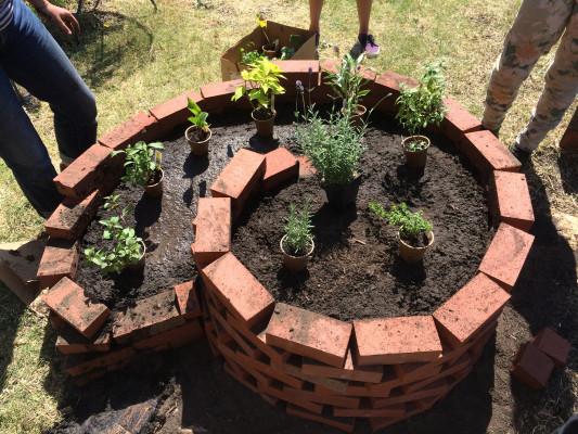Planting_Hiles_5-533x400.jpg