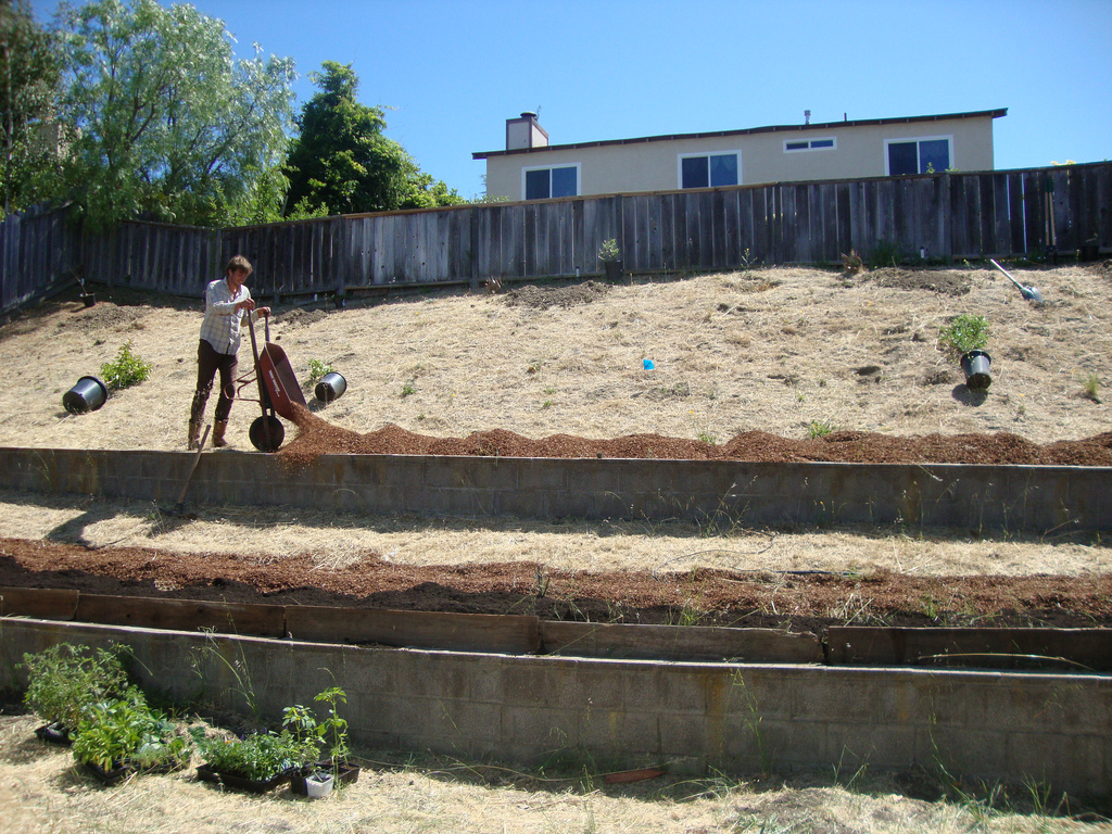 """""""Starting with a Shovel"""" - A Personal Path Towards Food Justice by Wiley Rogers wileymulch"""