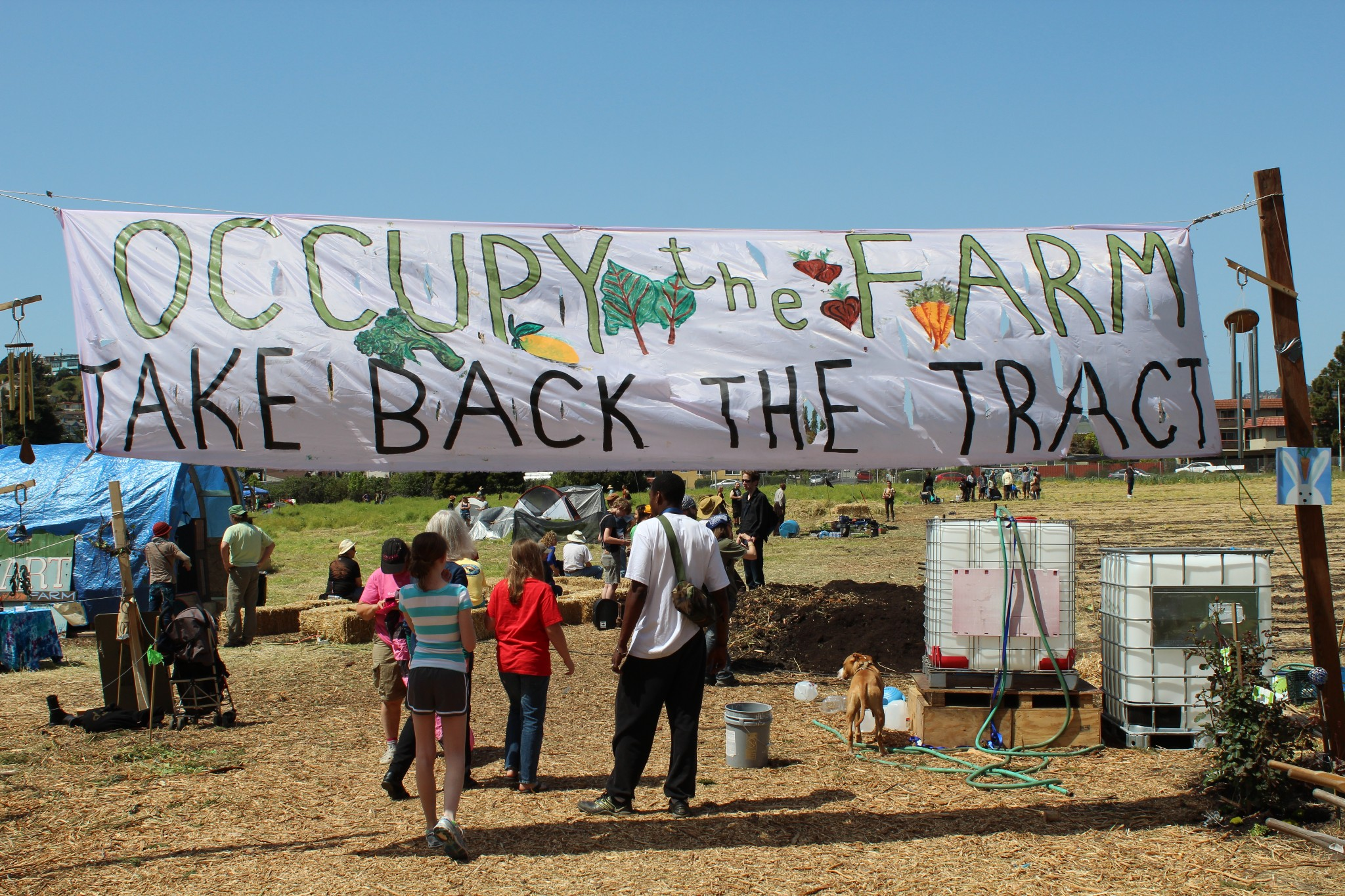IMG_8994-Occupy-the-Farm.jpg