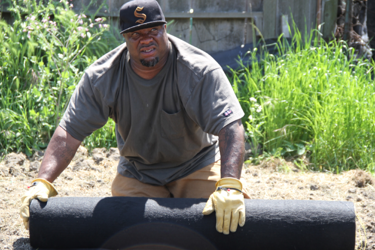 Urban farm Planting Justice adds East Oakland site, hires ex-offenders - Oakland Tribune