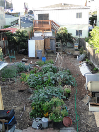 An aerial view of my garden, with chicken coop in the back, bee hive in the far right corner, greenhouses along the right hand side, and vegetables galore!