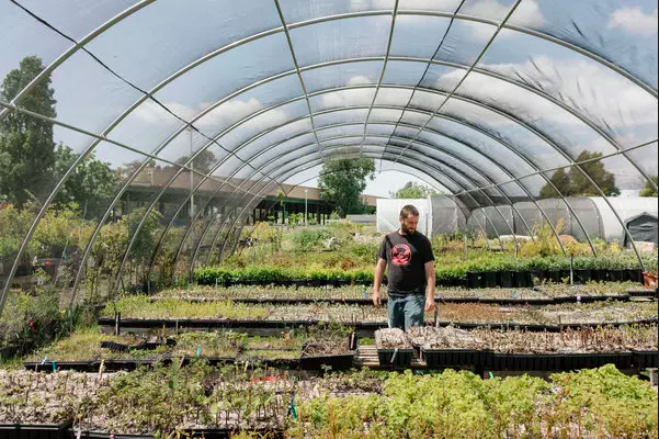 Kale, Not Jail: Urban Farming Nonprofit Helps Ex-Cons Re-enter Society - New York Times