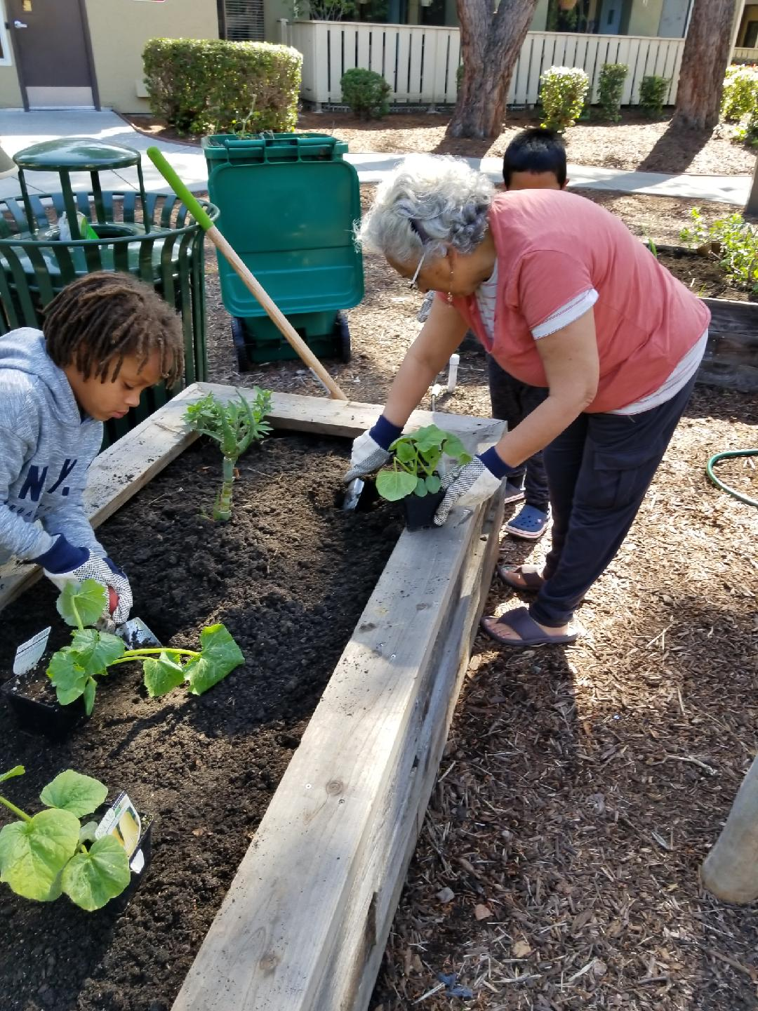 Elder and youth at Community Justice Garden, Ashland Apartments